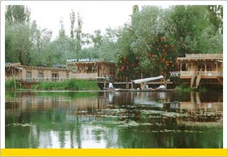 Tour to Dal Lake, Srinagar